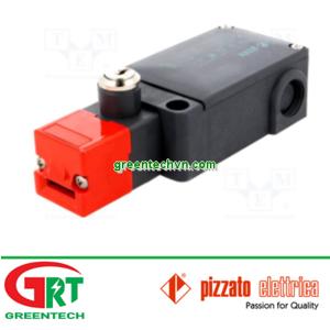 FS-2898D120 | Pizzato | Safety switch FS-2898D120 | Pizzato Vietnam