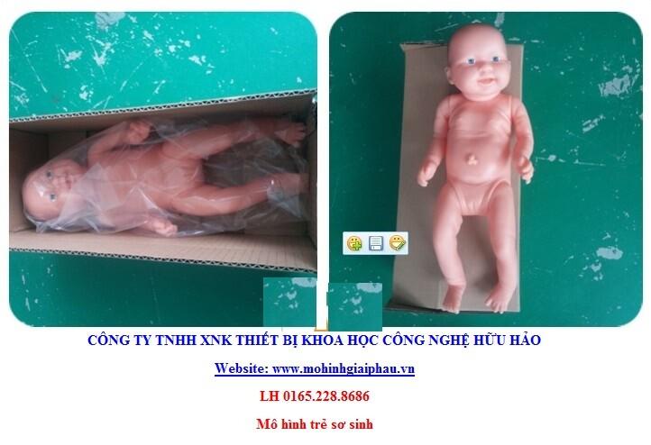 Mô hình điều dưỡng trẻ sơ sinh FT12