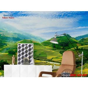 Gạch 3d Ruộng Bậc Thang RBT04