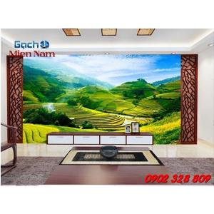 Gạch 3d Ruộng Bậc Thang RBT07