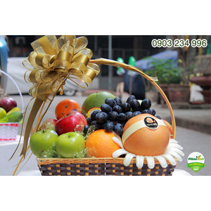 Giỏ hoa quả 21