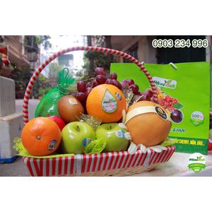 Giỏ hoa quả 6