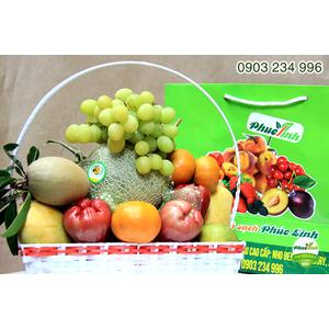 Giỏ hoa quả 17