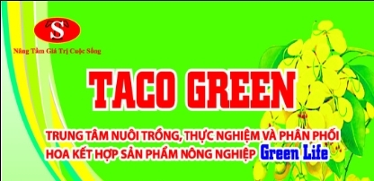 Công Ty Taco Green