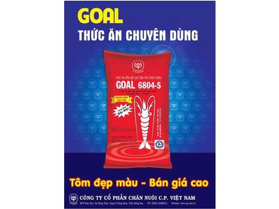 GOAL 6804 -S