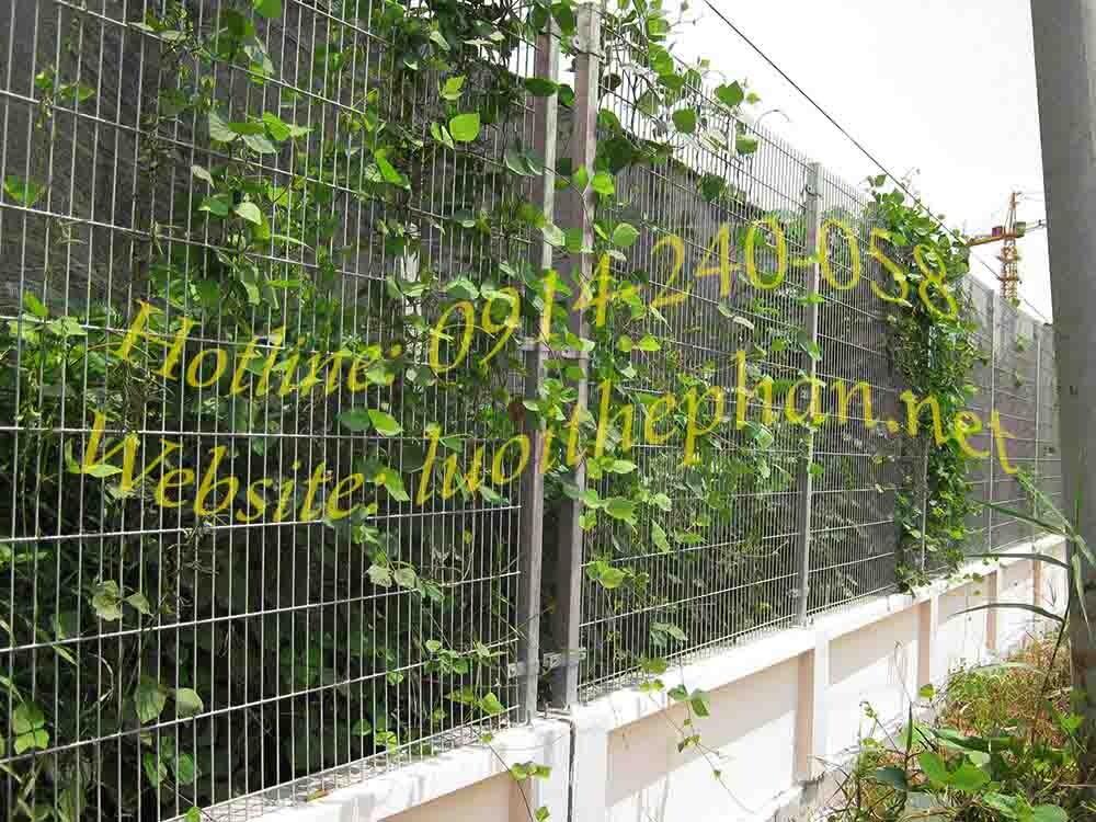 Hàng rào lưới thép hàn trơn thẳng - TTUnI
