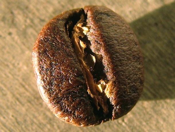 Hạt cà phê Arabica Bourbon sau khi rang