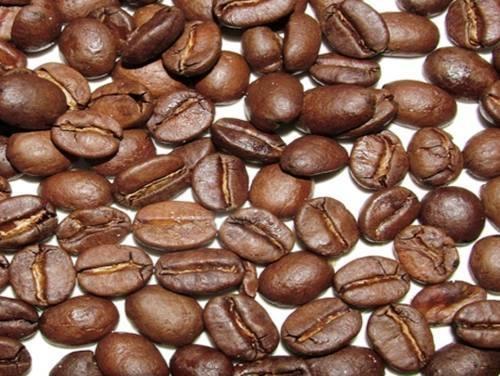 Hạt cà phê Catimor sau khi rang