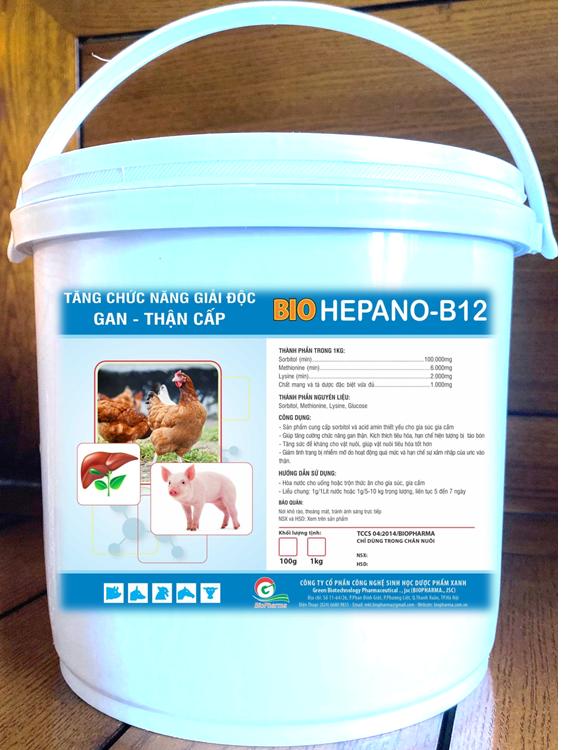 HEPANOL B12
