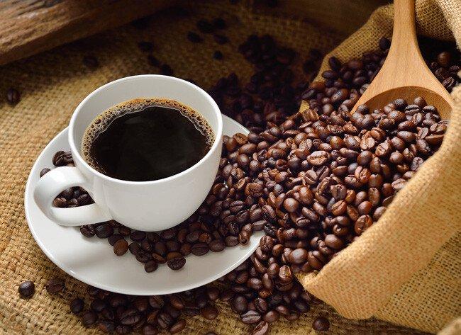 Cà phê con sóc xanh, Cà phê con sóc,  ca phe con soc hn, ca phe con soc hcm, cafe con soc,