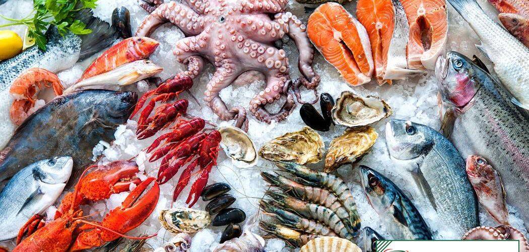 Kho lạnh bảo quản hải sản
