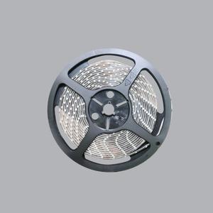 LED dây hắt trần màu trắng