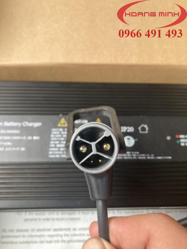 Li-on Battery Charger 48V9A DZL500SS02