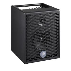 Loa Prodipe Natural 6 Acoustic Speaker