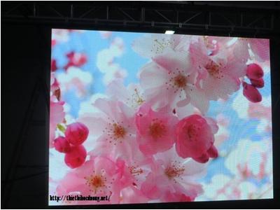 Màn hình LED P1.5 Indoor Full Color