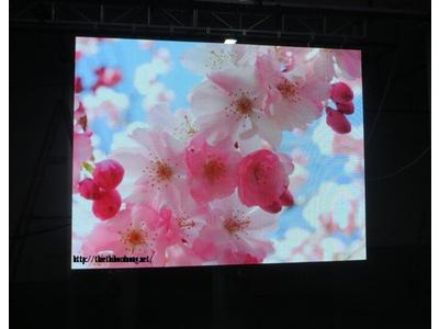 Màn hình P10 Indoor SMD Full Color 320*160mm LED Module
