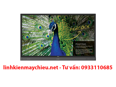 Màn hình tương tác BenQ RP750K 4K Ultra HD