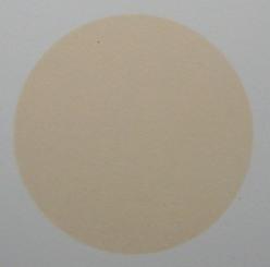 Mẫu màu sơn TT-BC007