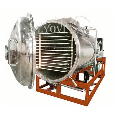 Máy sấy thăng hoa Lyo-100