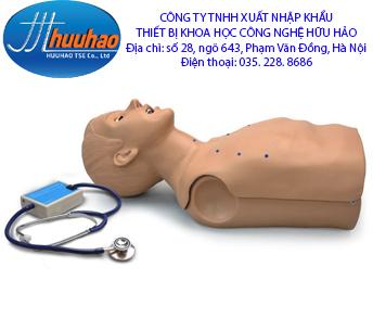 Mô hình thực hành nghe tim phổi người lớn