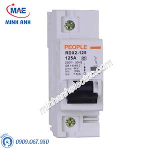MCB dòng cắt 10000A - RDX2-125 1P C100 125A