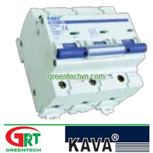 MCB KAVA DZ47-100 2P | Cầu dao tự động DZ47-100 2P | Kava Viet Nam |
