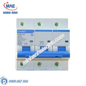 MCB NXB - 10kA - Model NXB-125 3P (63,80,100A)
