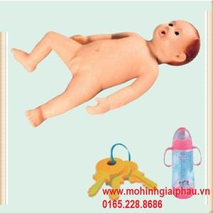 Mô hình trẻ sơ sinh hiếu động HHFT330