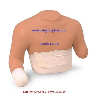 Mô hình băng bó vết thương cắt cụt chi trên