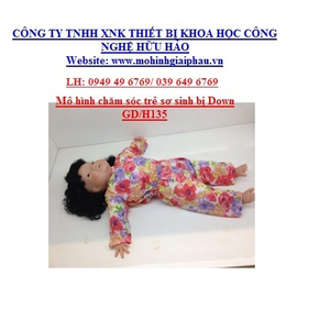 Mô hình chăm sóc Trẻ bị hội chứng Down GD/H135