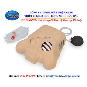 Mô hình đặt ống dẫn lưu màng phổi