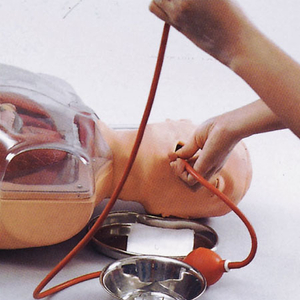 Mô hình đặt ống thông dạ dày