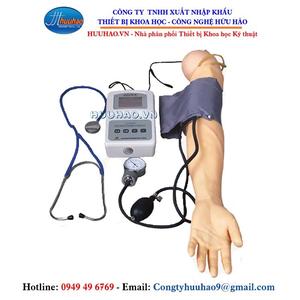 Mô hình đo huyết áp cánh tay