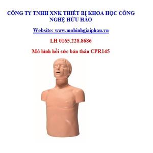 Mô hình hồi sức bán thân GD/CPR145