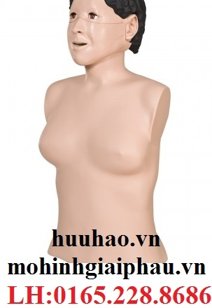 Mô hình hồi sức cấp cứu bán thân 3B