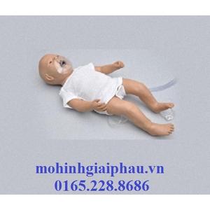 Mô hình hồi sức cấp cứu trẻ sơ sinh S104