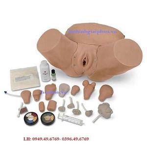 Mô hình khám phụ khoa Nasco LF01235U