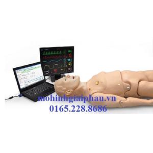 Mô hình thực hành kỹ năng hồi sức cấp cứu người lớn