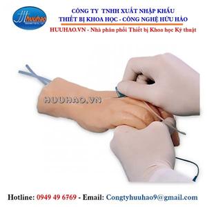 Mô hình thực hành tiêm tĩnh mạch bàn tay