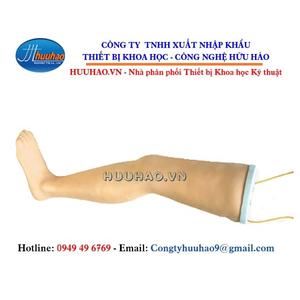 Mô hình tiêm bắp chân