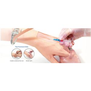 Mô hình truyền tĩnh mạch