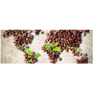 Những hạt cà phê trên Thế Giới