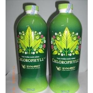 Nước diệp lục Liquid Chlorophyll, Nước diệp lục Synergy USA của cải thiện phản ứng miễn dịch