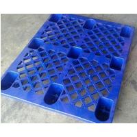 Pallet nhựa cốc 1.2 màu xanh