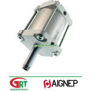 PF-------T   Aignep   Magnetic piston cylinder   Aignep Vietnam