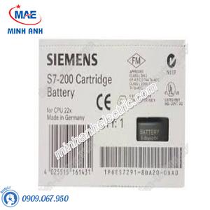 Pin PLC s7-200-6ES7291-8BA20-0XA0