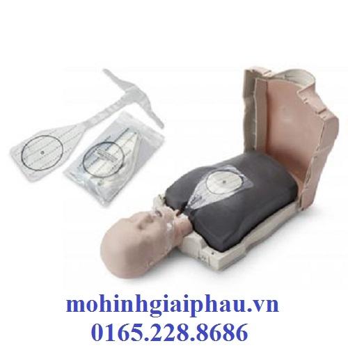 Bộ mô hình thực hành kỹ năng CPR cơ bản có kiểm soát điện tử