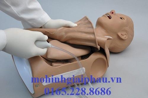 Mô hình bán thân hồi sức cấp cứu