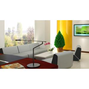 sofa phòng Tồng Giám Đốc SF001