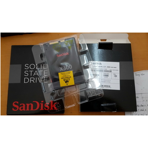 ssd sandisk 256gb x300